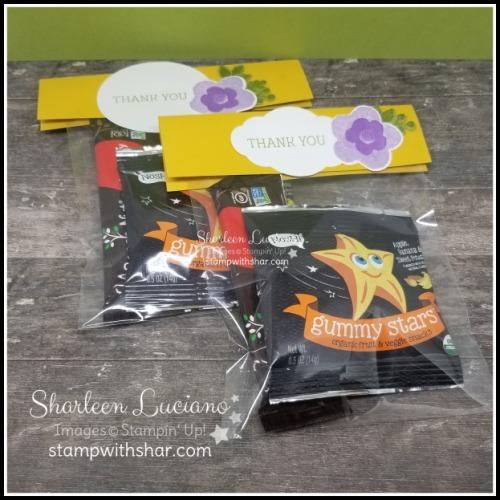 Envelope treat bags 2