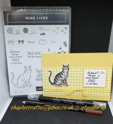 Nine_lives_card