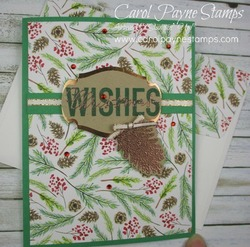 Stampin_up_more_than_words_carolpaynestamps1