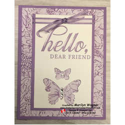 Front_hello_butterflies