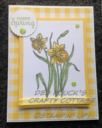 Happy spring   daffodils   hop on 3 20 19