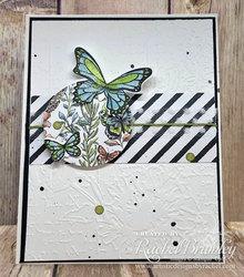 Butterfly_gala3