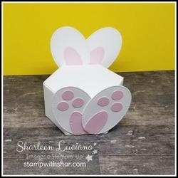 Bunny_box_front
