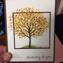 Sheltering_tree_fall