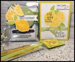 Z lemon projects