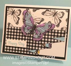 Butterfly_drapery_fold