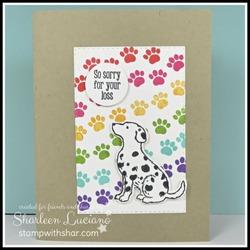 Rainbow bridge dog card front