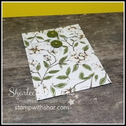Magnolia lane coin envelope