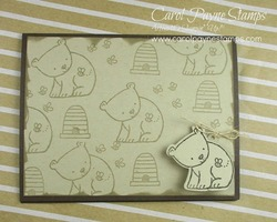 Stampin up a little wild carolpaynestamps1