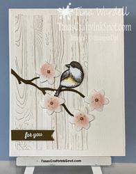 Bird_ballad01