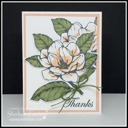 Thanks magnolia lane front