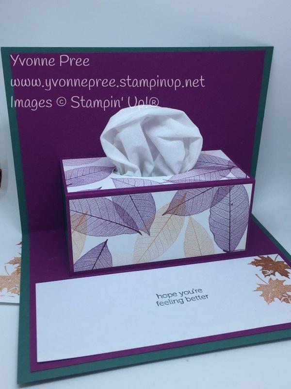 Tissue box   2  2