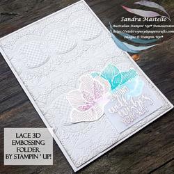Lace 3d embossing folder 01