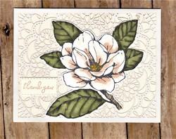 Lace_magnolia