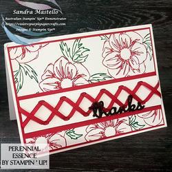 Perennial_essence_cross_ribbon_00