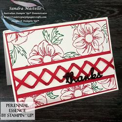 Perennial essence cross ribbon 00