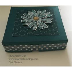 Daisylane_pizza_box