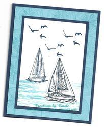 Sailing_home_2