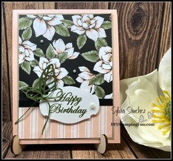 Z_monthly_card_kit_in_the_mail_pic