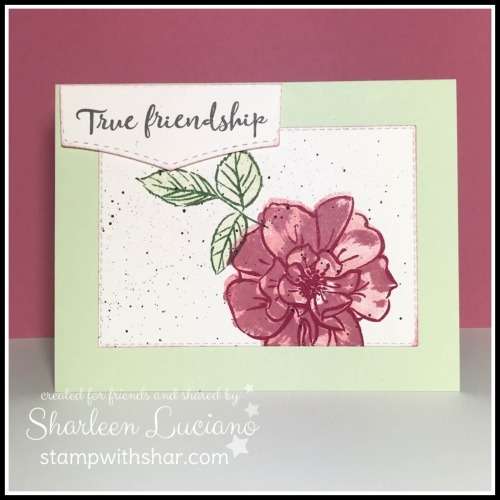 True_friendship_front
