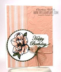 Petal_pink_blooms_full