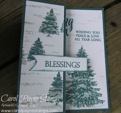 Stampin up winter woods carolpaynestamps1
