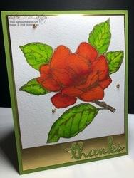0719_sprinkles_poppy_magnolia