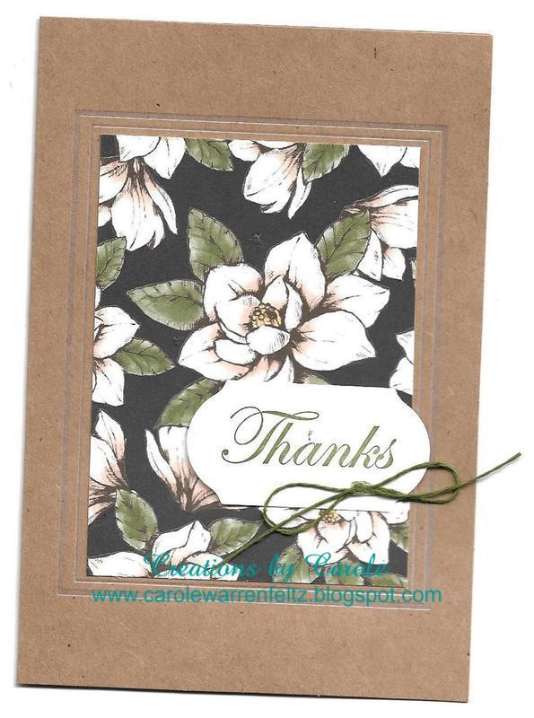 Good_morning_magnolia_3