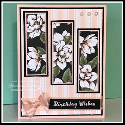 Magnolia_lane_wishes_front
