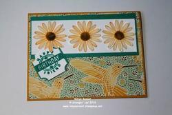 Daisy_lane_mosaic_2