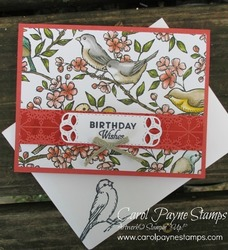Stampin_up_free_as_a_bird_ballad_carolpaynestamps1