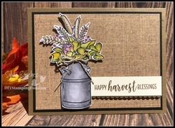 Z havest blessings case 336 card