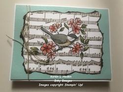 Song bird card