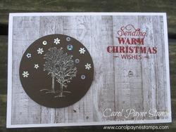 Stampin_up_natures_beauty_christmas_carolpaynestamps1