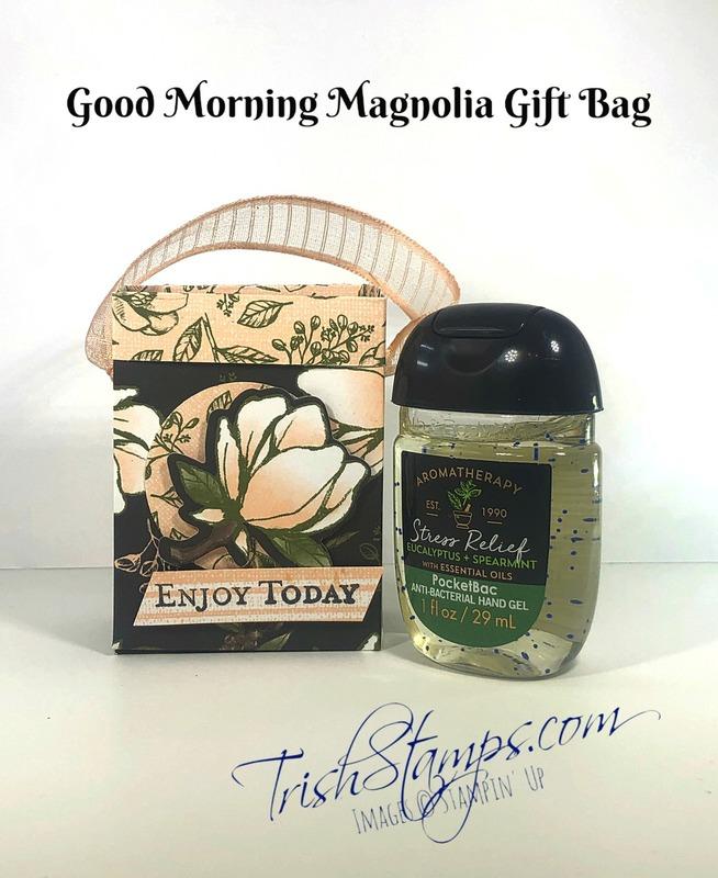 Gift_bag_w_sanitizer