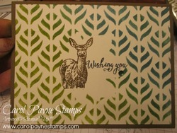 Stampin_up_natures_beauty_carolpaynestamps1_1