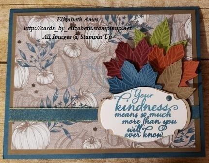Ty kindnesswm