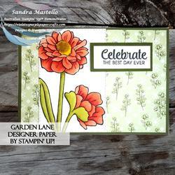 Garden_lane_celebrate_card