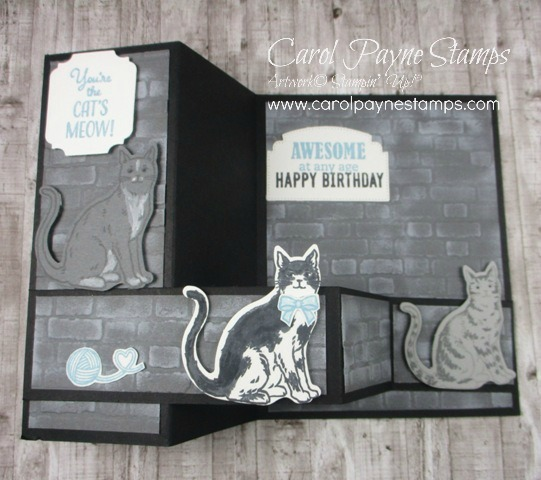 Stampin_up_nine_lives_carolpaynestamps2