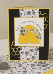 2020 honey bee bundle  1