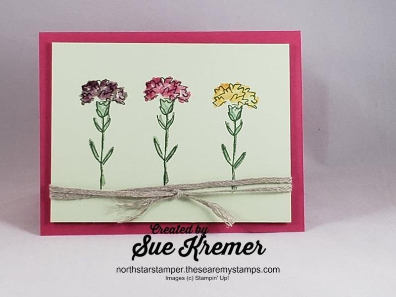 Carnations_iris