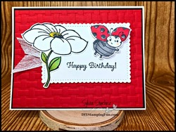 Z lady bug card