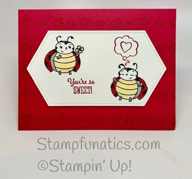Little_ladybug_card