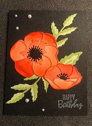 Painted_poppies_bundle