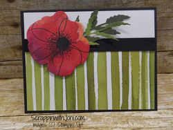 Poppy_stripe_card