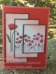 Peaceful_poppies_suite_3