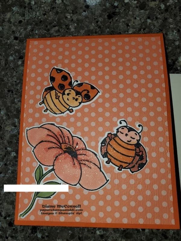 Ladybugbday