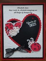 Lady bug valentine wm