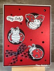 Ladybug_front