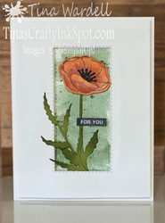Painted_poppies